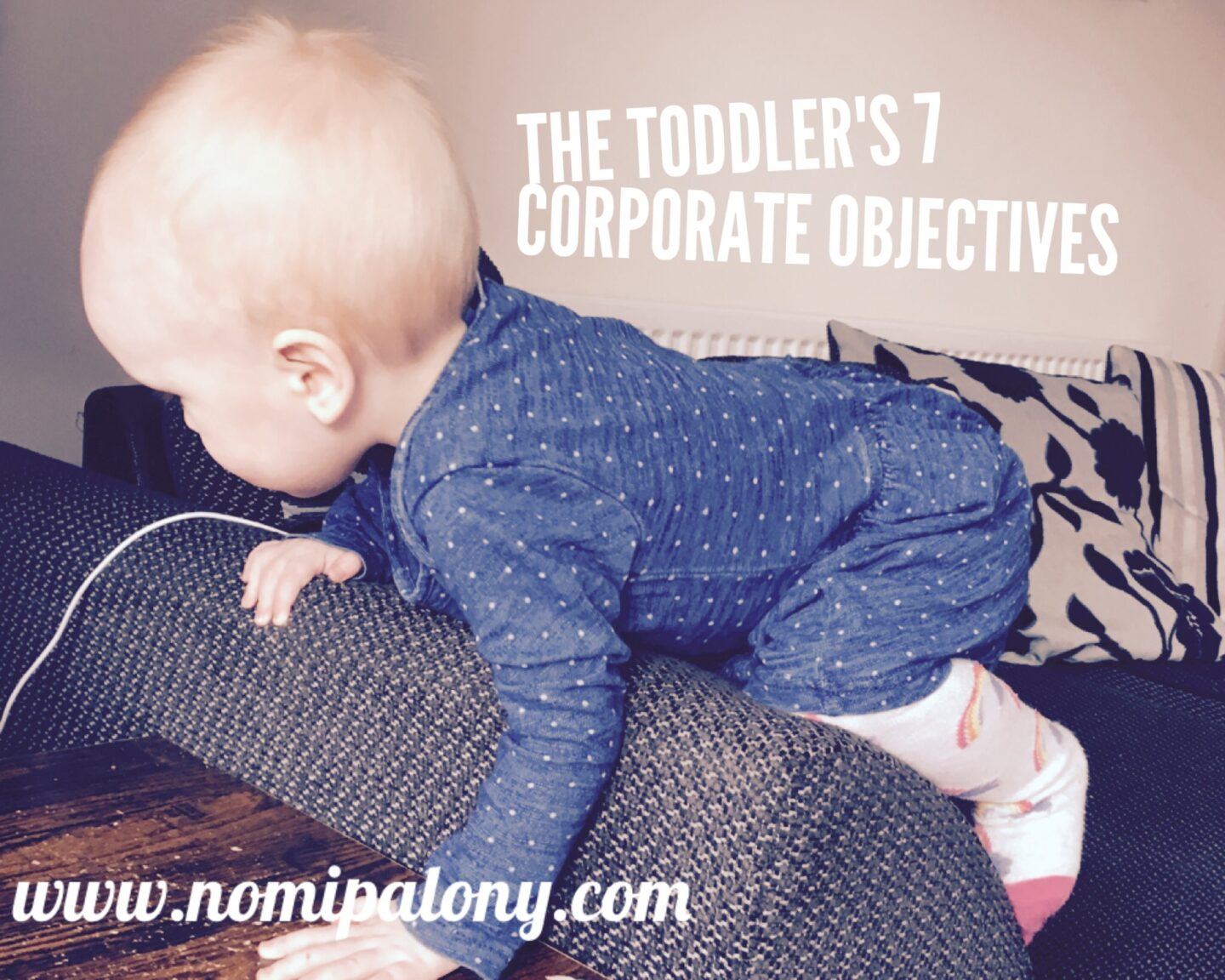 The toddler's 7 corporate objectives