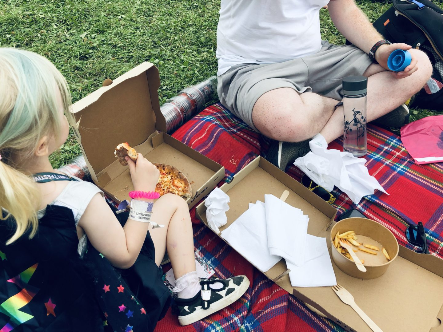 Y Not festival family review