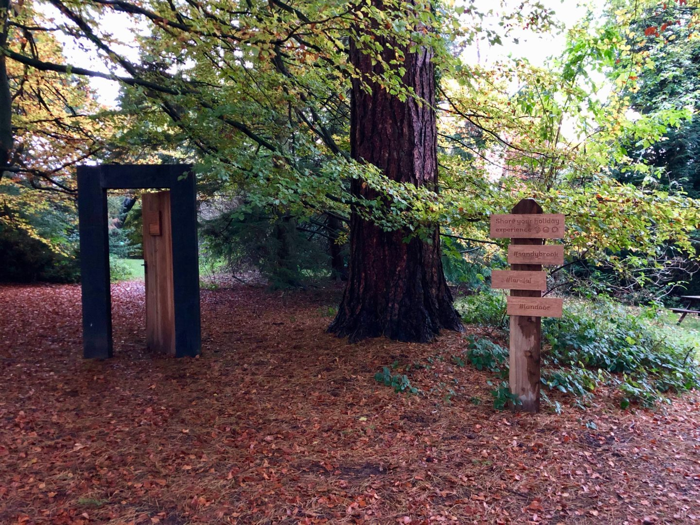 AD: Landal Sandybrook Peak District family review - a relaxing autumnal long weekend break. The woodland walk at Landal Sandybrook, Peak District.