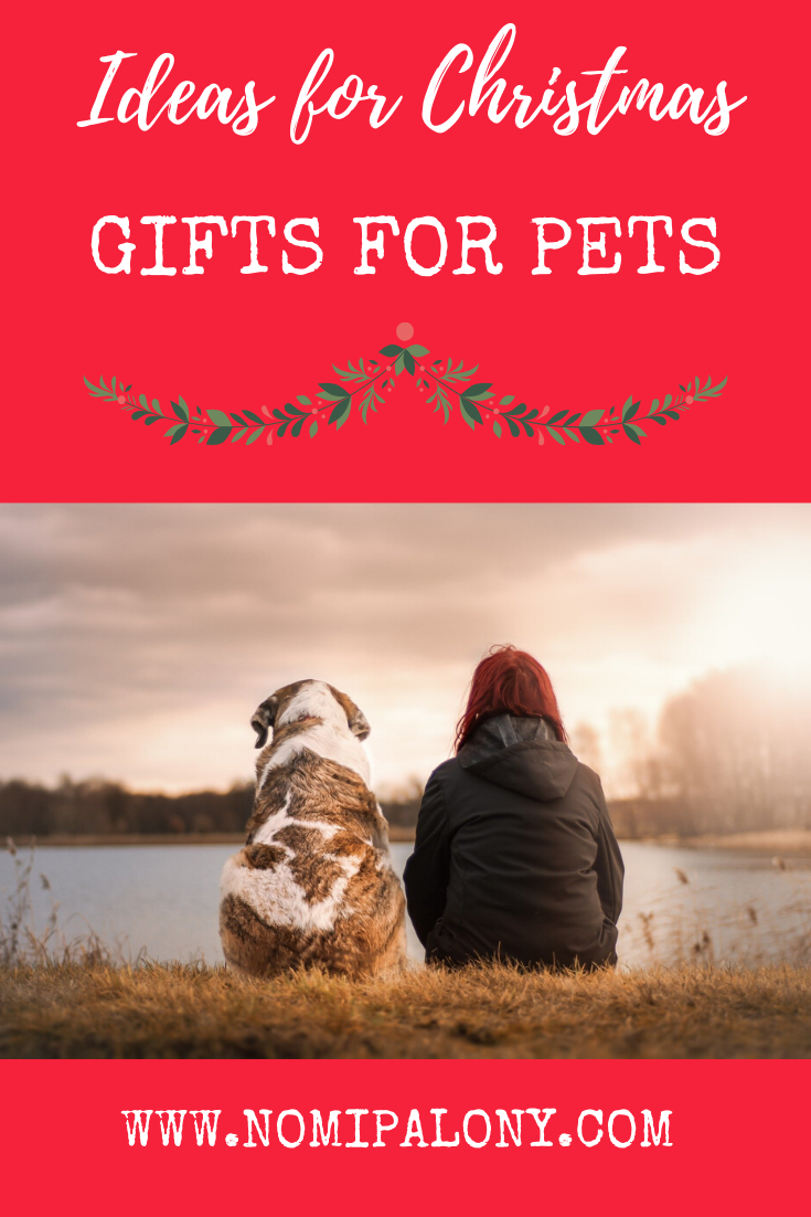 #AD: Ideas for Christmas gifts for pets - from pet beds, to doggy mince pies to pet insurance and more.