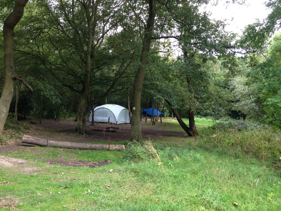 Tents wild camping in the woods