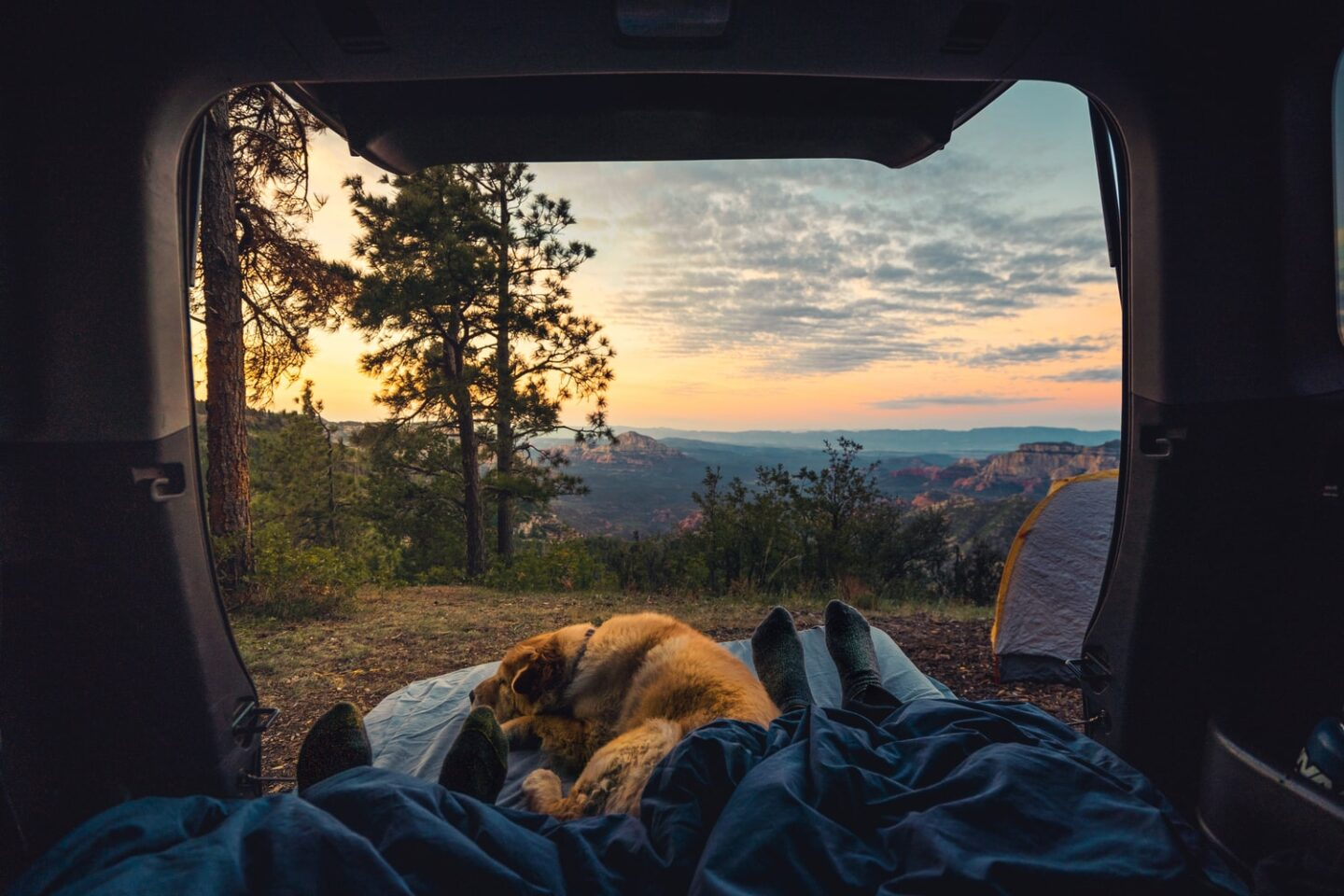 Scenic view from a tent with a dog curled up by someone's feet.