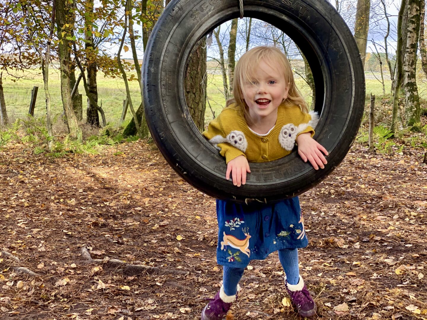 Girl playing on tyre swing in the woods
