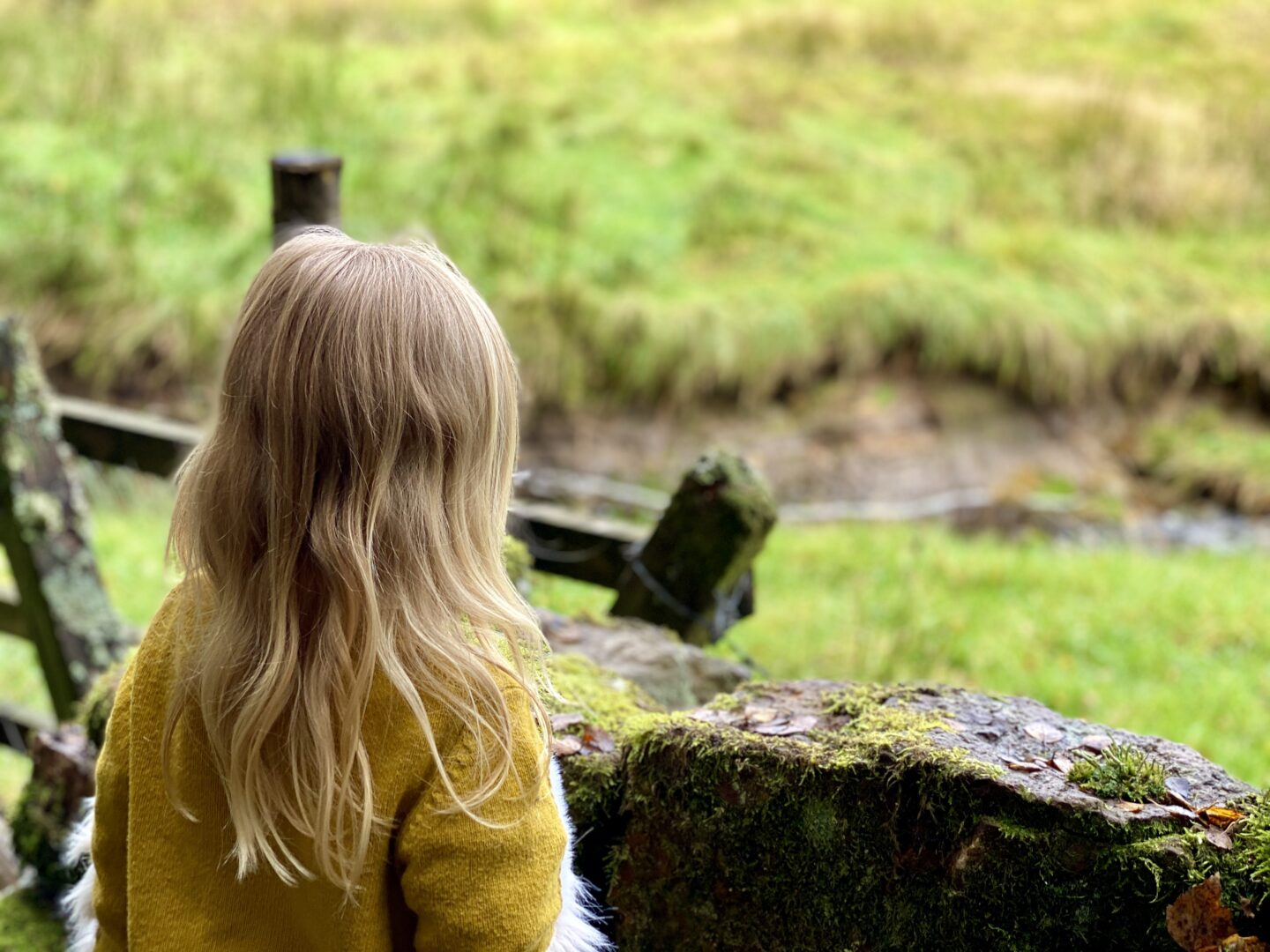 Girl looking at fields