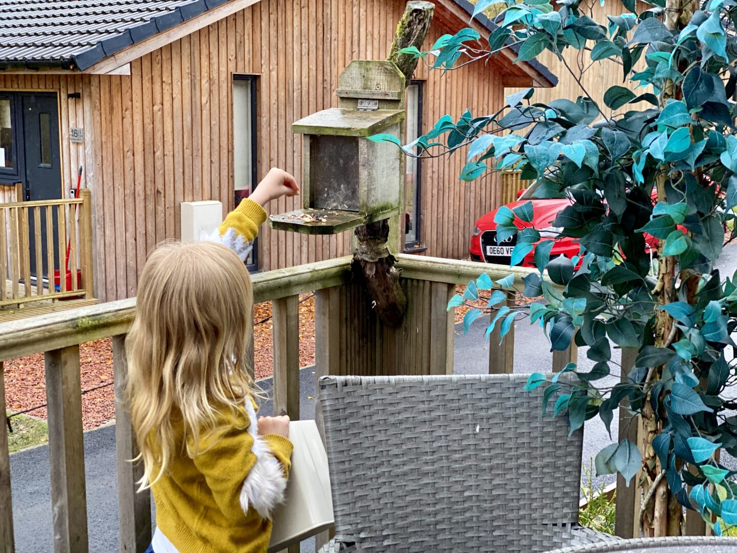 Girl putting squirrel feed on a wooden feeder stand