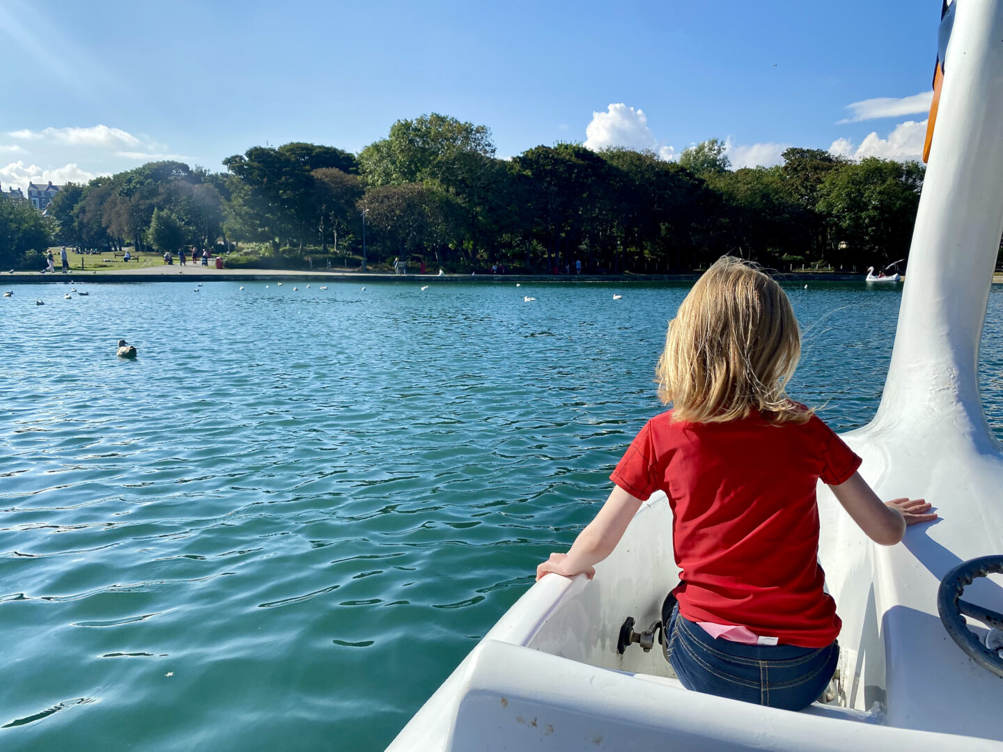 A young girl in a red top riding a swan boat on a boating lake